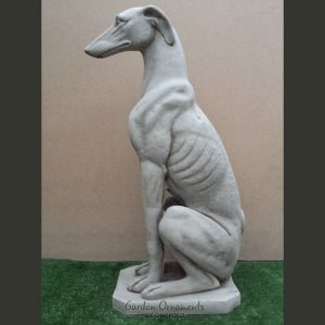 large greyhound