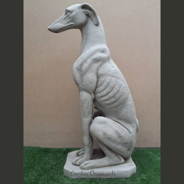 Merveilleux Large Greyhound