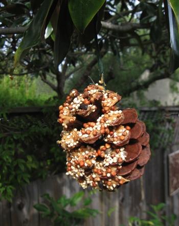 pinecone-bird-feeder