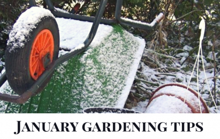 January gardening tips It doesn't matter what month it is, there is always something to do in your garden. So why not start the year as you mean to go on with some time out in your garden? We have put together some top tips on the things that you should be doing out in […]