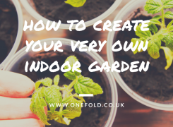 How to create your very own indoor garden