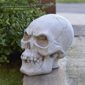 Skeletor Skull Head Garden Ornament