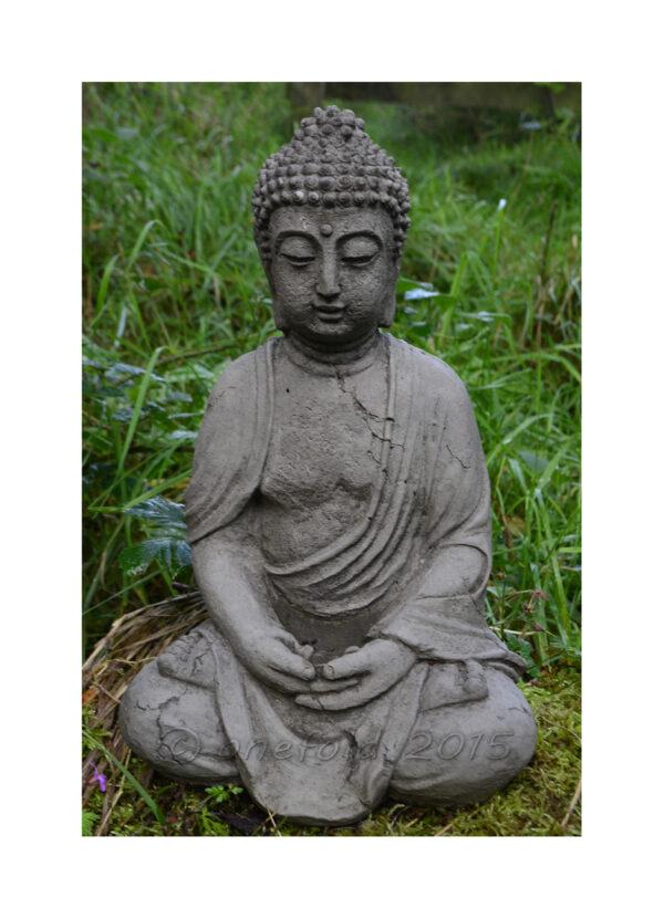 Antique Buddha Statue - small