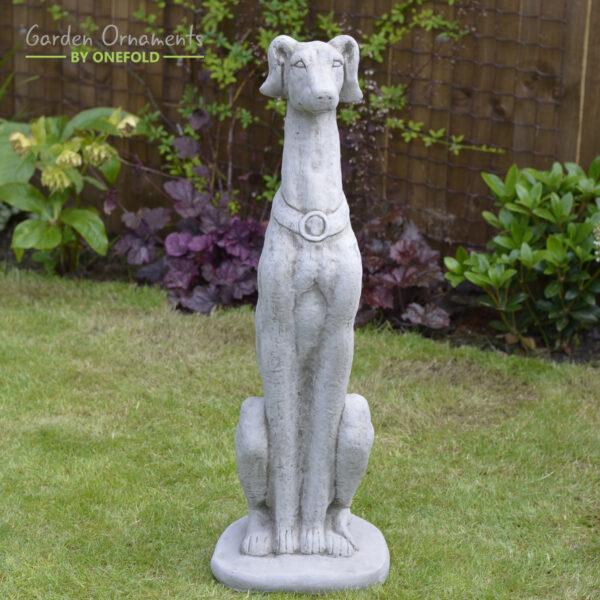Large Sitting Greyhound